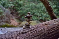 Totem on a log